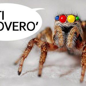 indicizzazione google spider di ricerca